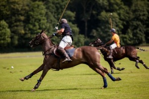 Argentine Polo Open